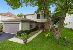 Photo of 1130 Singleton Drive, ROSELLE, IL 60172 (MLS # 09701978)