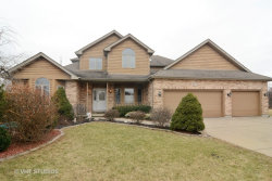 Photo of 803 Andover Court, PROSPECT HEIGHTS, IL 60070 (MLS # 09710860)