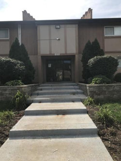 Photo of 880 E Old Willow Road, Unit Number 168, PROSPECT HEIGHTS, IL 60070 (MLS # 09713940)
