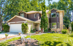 Photo of 2369 N Irene Drive, PALATINE, IL 60074 (MLS # 09716927)