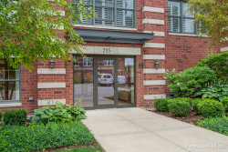 Photo of 255 E Liberty Drive, Unit Number 608-2, WHEATON, IL 60187 (MLS # 09717025)