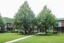 Photo of 1106 N Dale Avenue, Unit Number 2G, ARLINGTON HEIGHTS, IL 60004 (MLS # 09723552)