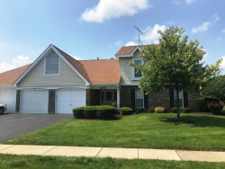 Photo of 305 N Creekside Trail, Unit Number B, MCHENRY, IL 60050 (MLS # 09724683)