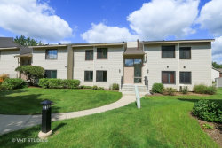 Photo of 66 Commonwealth Court, Unit Number 3, VERNON HILLS, IL 60061 (MLS # 09743284)