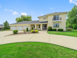 Photo of 198 Canvasback Lane, BLOOMINGDALE, IL 60108 (MLS # 09749718)