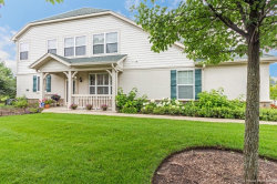 Photo of 259 Shadow Creek Circle, Unit Number 0, VERNON HILLS, IL 60061 (MLS # 09752534)