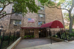 Photo of 3620 N Pine Grove Avenue, Unit Number 206, CHICAGO, IL 60613 (MLS # 09754385)
