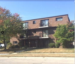 Photo of 1578 Liberty Drive, Unit Number 1N, GLENDALE HEIGHTS, IL 60139 (MLS # 09757003)