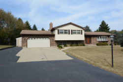 Photo of 1802 Lakeview Street, JOHNSBURG, IL 60051 (MLS # 09767242)