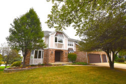 Photo of 1442 Terrance Drive, NAPERVILLE, IL 60565 (MLS # 09768188)