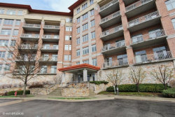 Photo of 100 Prairie Park Drive, Unit Number 606, WHEELING, IL 60090 (MLS # 09768609)