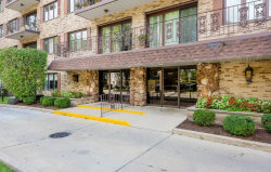 Photo of 8225 Niles Center Road, Unit Number 311, SKOKIE, IL 60077 (MLS # 09772532)