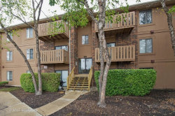 Photo of 1081 Rodenburg Road, Unit Number 107, ROSELLE, IL 60172 (MLS # 09773638)