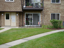 Photo of 9416 Bay Colony Drive, Unit Number 1N, DES PLAINES, IL 60016 (MLS # 09776837)
