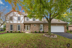 Photo of 359 Knoch Knolls Road, NAPERVILLE, IL 60565 (MLS # 09776974)