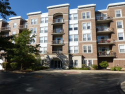 Photo of 455 W Wood Street, Unit Number 402, PALATINE, IL 60067 (MLS # 09778628)