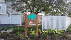 Photo of 1636 Timber Trail, Unit Number 0, WHEATON, IL 60187 (MLS # 09783484)