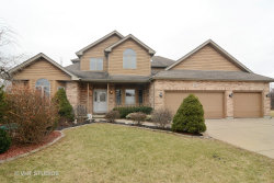 Photo of 803 Andover Court, PROSPECT HEIGHTS, IL 60070 (MLS # 09784957)