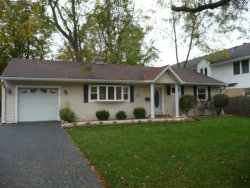 Photo of 5108 Wolf Road, WESTERN SPRINGS, IL 60558 (MLS # 09793636)