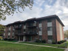 Photo of 14969 Willowcrest Court, Unit Number 14, MIDLOTHIAN, IL 60445 (MLS # 09797195)