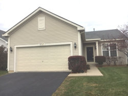 Photo of 730 S Mecosta Lane, ROMEOVILLE, IL 60446 (MLS # 09800840)