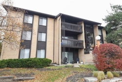 Photo of 6180 Knoll Lane Court, Unit Number 203, WILLOWBROOK, IL 60527 (MLS # 09801553)