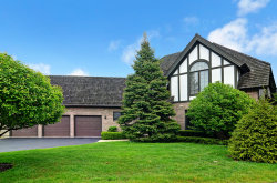 Photo of 601 Kenmare Drive, BURR RIDGE, IL 60527 (MLS # 09804592)