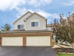 Photo of 284 Nicole Drive, Unit Number B, SOUTH ELGIN, IL 60177 (MLS # 09805834)