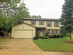 Photo of 687 S Brentwood Drive, CRYSTAL LAKE, IL 60014 (MLS # 09808855)
