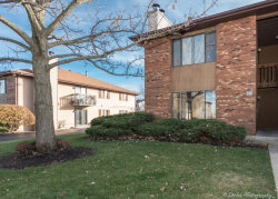 Photo of 1043 Manchester Court, Unit Number 1043, SOUTH ELGIN, IL 60177 (MLS # 09809162)