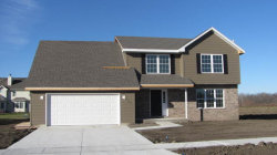 Photo of 1858 Periwinkle Drive, MORRIS, IL 60450 (MLS # 09809508)