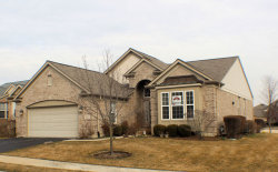 Photo of 9351 Dunmore Drive, ORLAND PARK, IL 60462 (MLS # 09810670)