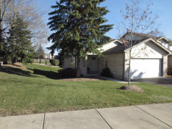 Photo of 16701 Sheridans Trail, ORLAND PARK, IL 60467 (MLS # 09810890)