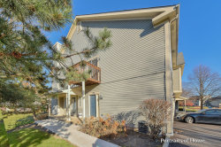 Photo of 17 Windsor Circle, Unit Number D, SOUTH ELGIN, IL 60177 (MLS # 09811817)