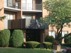 Photo of 950 E Wilmette Road, Unit Number 217, PALATINE, IL 60067 (MLS # 09812269)