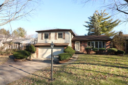 Photo of 1809 N Park Drive, MOUNT PROSPECT, IL 60056 (MLS # 09812328)