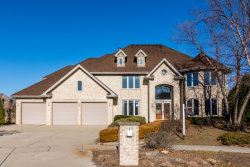 Photo of 10834 Carolyn Court, ORLAND PARK, IL 60467 (MLS # 09812997)