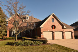Photo of 17321 Antler Drive, ORLAND PARK, IL 60467 (MLS # 09814577)