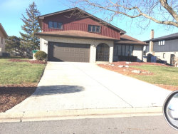 Photo of 13636 Wooly Hill Drive, Orland Park, IL 60467 (MLS # 09814977)