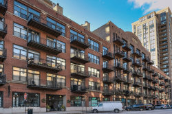 Photo of 375 W Erie Street, Unit Number 303, CHICAGO, IL 60654 (MLS # 09816904)
