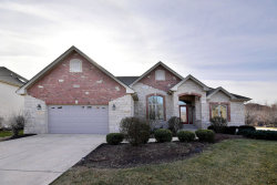 Photo of 204 Amherst Circle, OSWEGO, IL 60543 (MLS # 09818641)