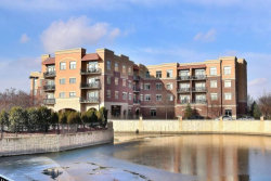 Photo of 1210 N Foxdale Drive, Unit Number 203, ADDISON, IL 60101 (MLS # 09820107)