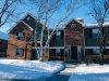 Photo of 1547 Raymond Drive, Unit Number 203, NAPERVILLE, IL 60563 (MLS # 09827465)