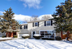 Photo of 409 S We Go Trail, MOUNT PROSPECT, IL 60056 (MLS # 09831206)