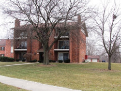 Photo of 9933 Treetop Drive, Unit Number 3E, ORLAND PARK, IL 60462 (MLS # 09832407)