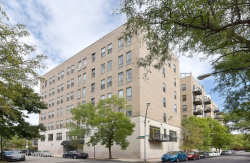 Photo of 811 S Lytle Street, Unit Number 200, CHICAGO, IL 60607 (MLS # 09833510)