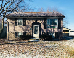 Photo of 22312 Nichols Drive, SAUK VILLAGE, IL 60411 (MLS # 09833967)