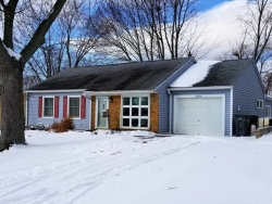 Photo of 10256 Hibiscus Drive, ORLAND PARK, IL 60462 (MLS # 09835206)