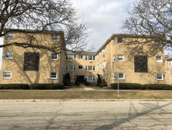 Photo of 3818 Ruby Street, Unit Number 2W, SCHILLER PARK, IL 60176 (MLS # 09847186)