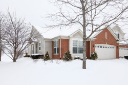 Photo of 1174 Betsy Ross Place, BOLINGBROOK, IL 60490 (MLS # 09853172)